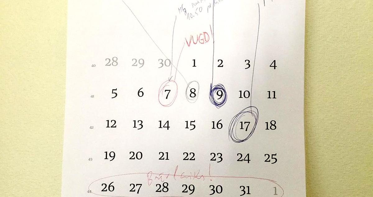 mrserge.lv kalendārs plānotājiem–ķēpātājiem darbībā.