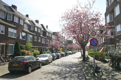 netherlands-500_36.jpg
